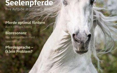 Natural Horse Bericht